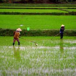 Mototrip Vietnamom