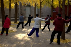 Tai Chi dôchodcovia ráno v parku - veľmi bežný pohľad