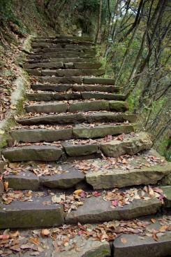 """Kvôli krásnym výhľadom na """"Avatarove"""" hory sme si museli vyšlapať 2500 schodov"""