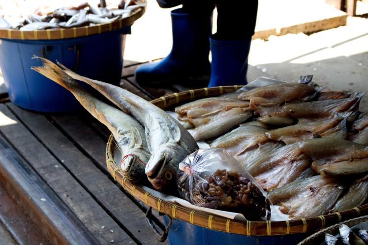 13_Surove-ryby-na-kolajniciach
