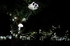 Medúzová výzdoba v jednej z taipeiských záhrad