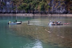 Rybárske farmy v zátoke Lan Ha Bay