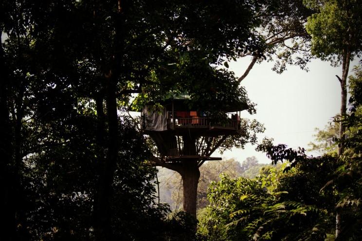 Na tomto domčeku na strome sme strávili jednu noc