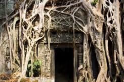 05_Oblast-Angkor-stromy