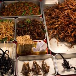 Larvičky, koníky, škorpióny - najväčšie lahôdky v meste:)