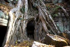 07_Tomb-Rider-Wat-Cambodia