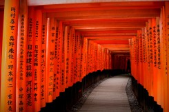 Fushimi Inari - nekončiaci rad červených brán. Krásna atmosféra