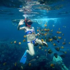 Rybací útok! :)