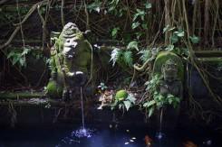Ubud Monkey forest - odmysliac si všetkých ľudí naokolo, cítili by sme sa ako v zarastenej džungli so stratenými chrámami